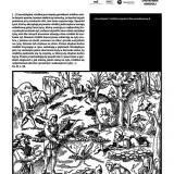 agricola_druk_2 (Copy)
